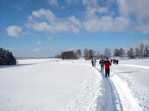 Try cross-country skiing trails at Hostinné
