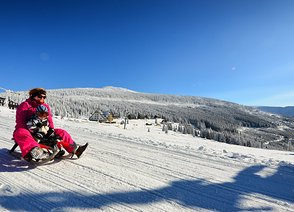 Tips on where to enjoy a good sleigh ride