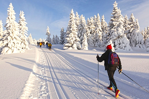 Enjoy cross-country skiing on the ridges and in the foothills of the Giant Mountains